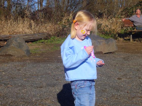 Finding rocks to throw